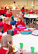 Lowther School Meals page link